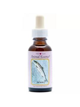 Cinuforce mentholspray
