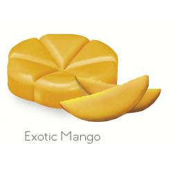 Geurchips exotic mango