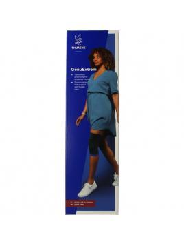 Mango ginger flesje