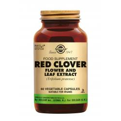 Red Clover Flower and Leaf Extract