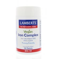 IJzer complex vegan