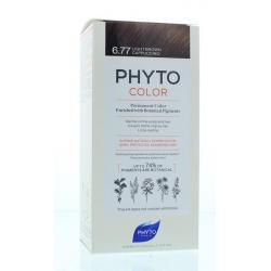 Phytocolor marron clair...